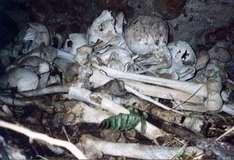 Kannibalen Opfer